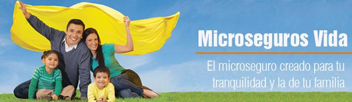 Micro seguro Vida